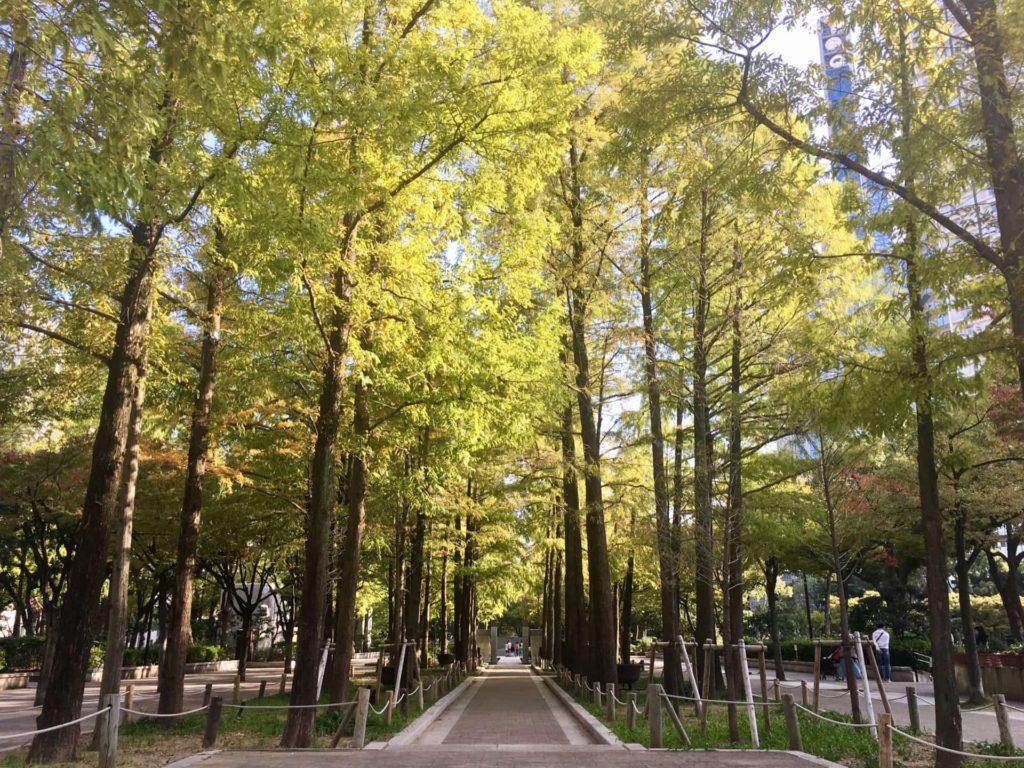 神戸 フォトジェニック 写真撮影 スポット おしゃれ インスタ映え 東遊園地