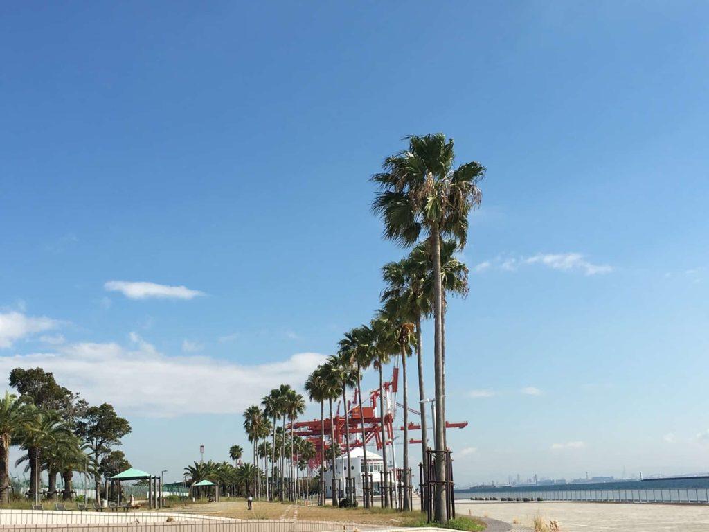 神戸 フォトジェニック 写真撮影 スポット おしゃれ インスタ映え 六アイ 六甲アイランド マリンパーク