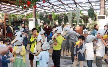 神戸どうぶつ王国 神戸動物王国 花鳥園 ハロウィン ハロウィーン イベント 2017年