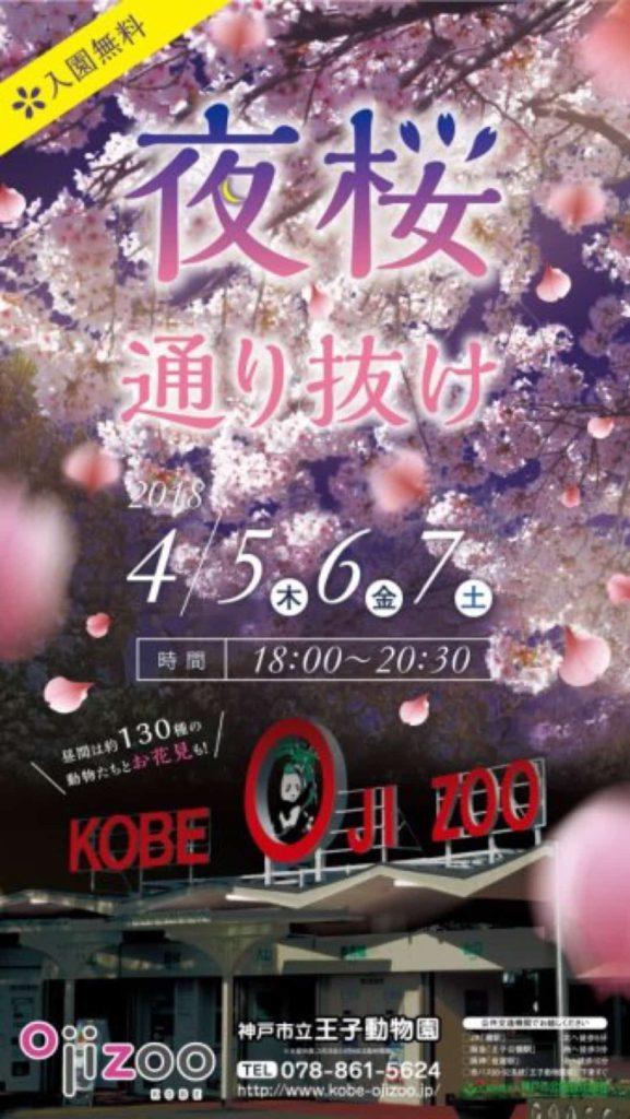 神戸 王子動物園 夜桜通り抜け 2018 いつ 開催期間 開催時間 無料