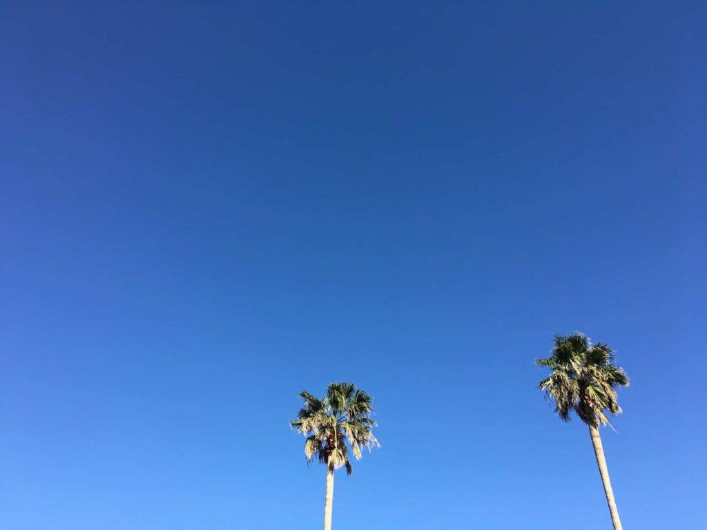 六甲アイランド バーベキュー場 RICバーベキュー広場 バーベキュー広場 神戸市 スポット マリンパーク 公園 施設 口コミ ブログ