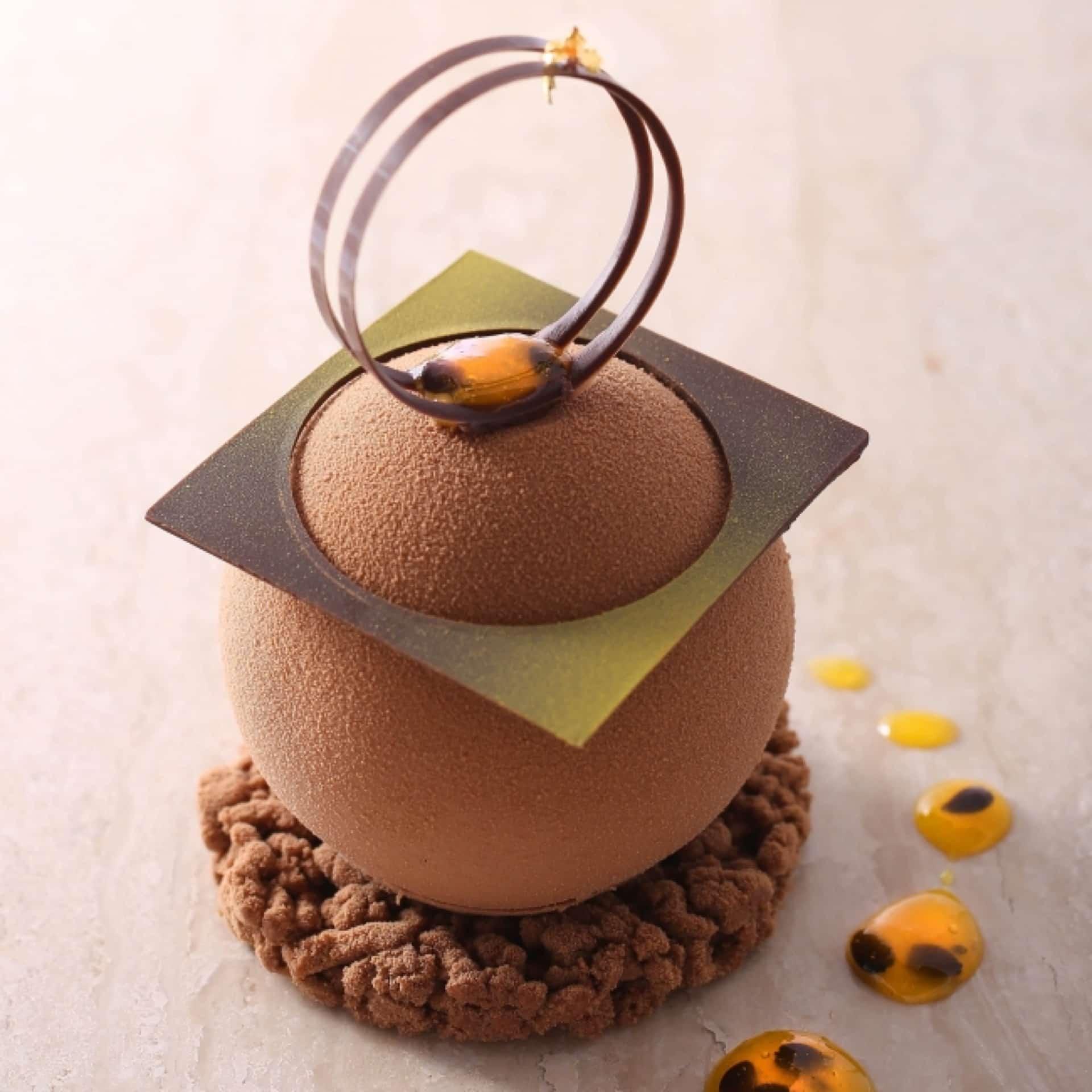 フォトジェニックなスイーツ…!「アンテノール」から美しいショコラケーキが期間限定で登場