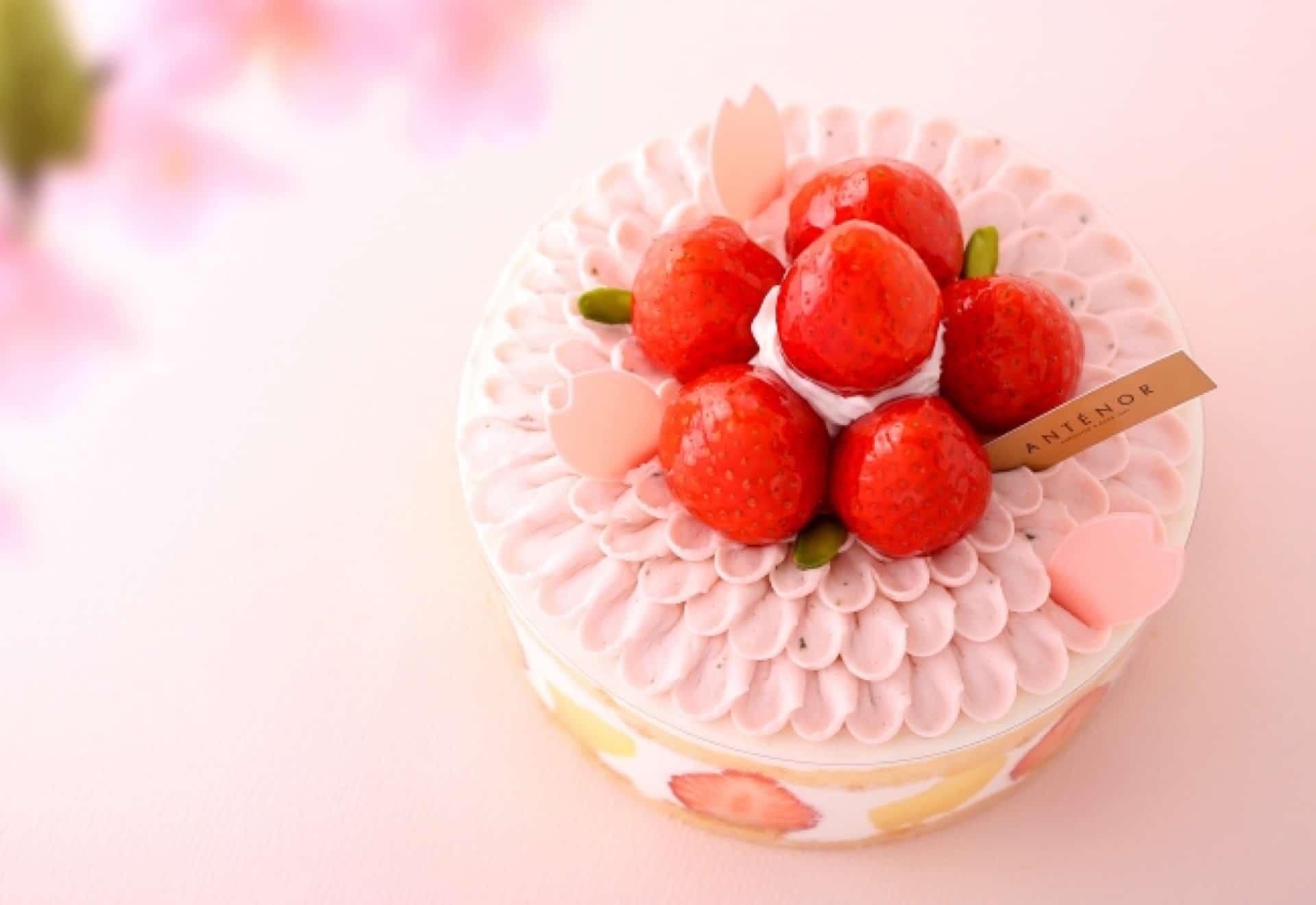 アンテノールから桜のケーキ&春の焼き菓子が登場!春爛漫なスイーツはおもたせにもぴったり