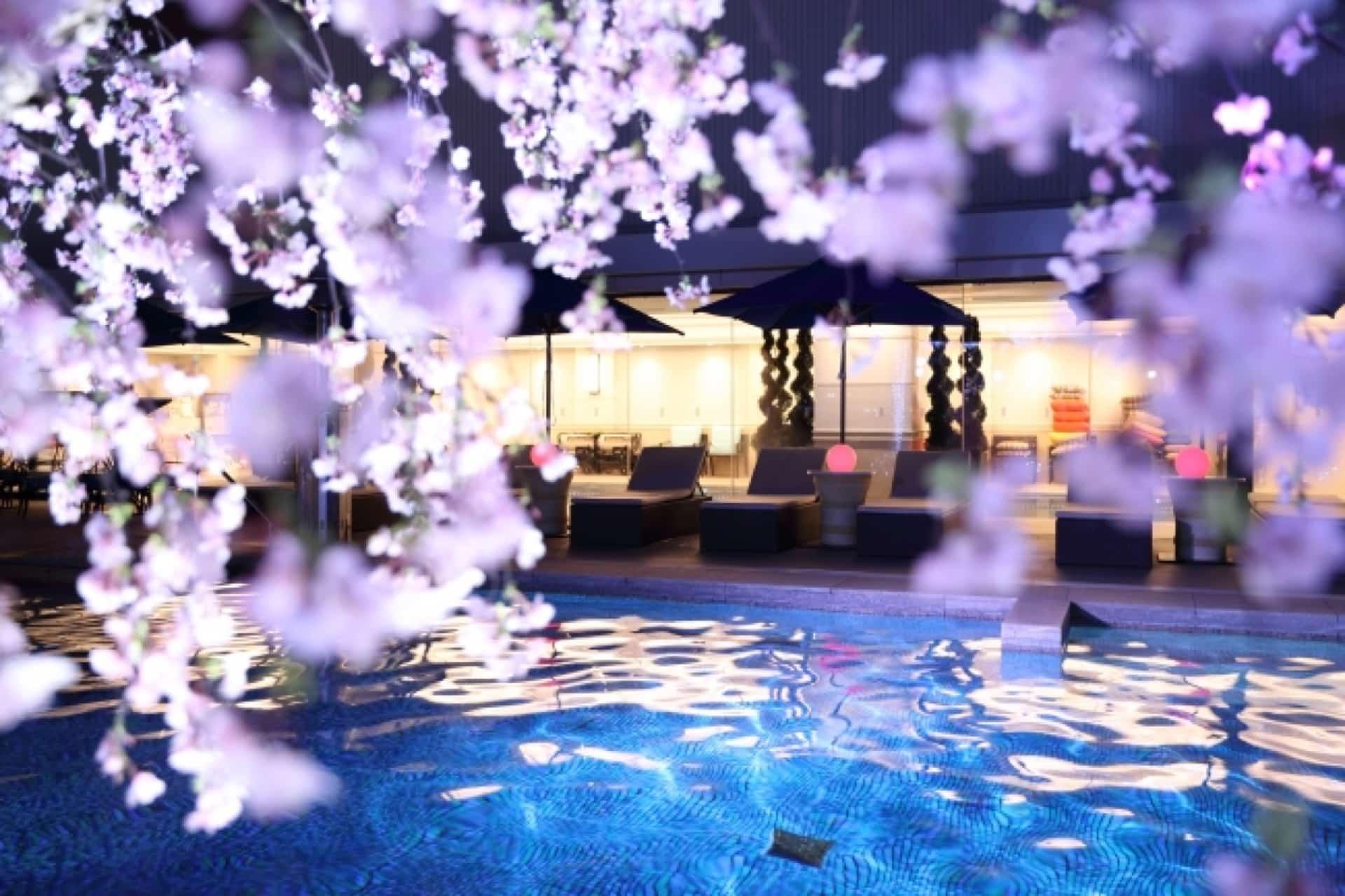 桜でインスタ映え!神戸みなと温泉蓮の「SAKURAナイトプール」は春から楽しめるよ