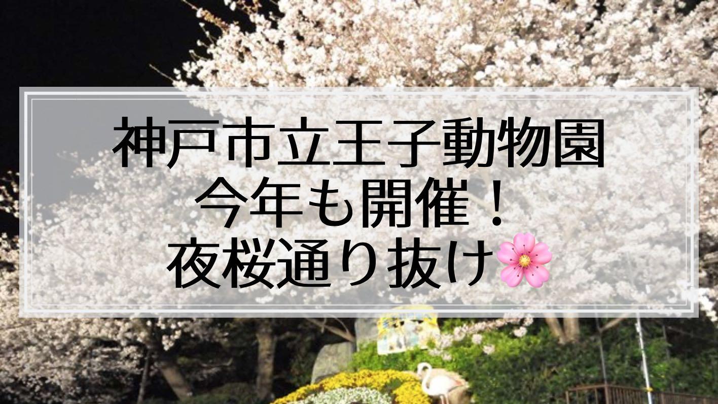 【2019年】無料で楽しめる!王子動物園の夜桜通り抜け。開催日・開催時間をチェックして見に行こう