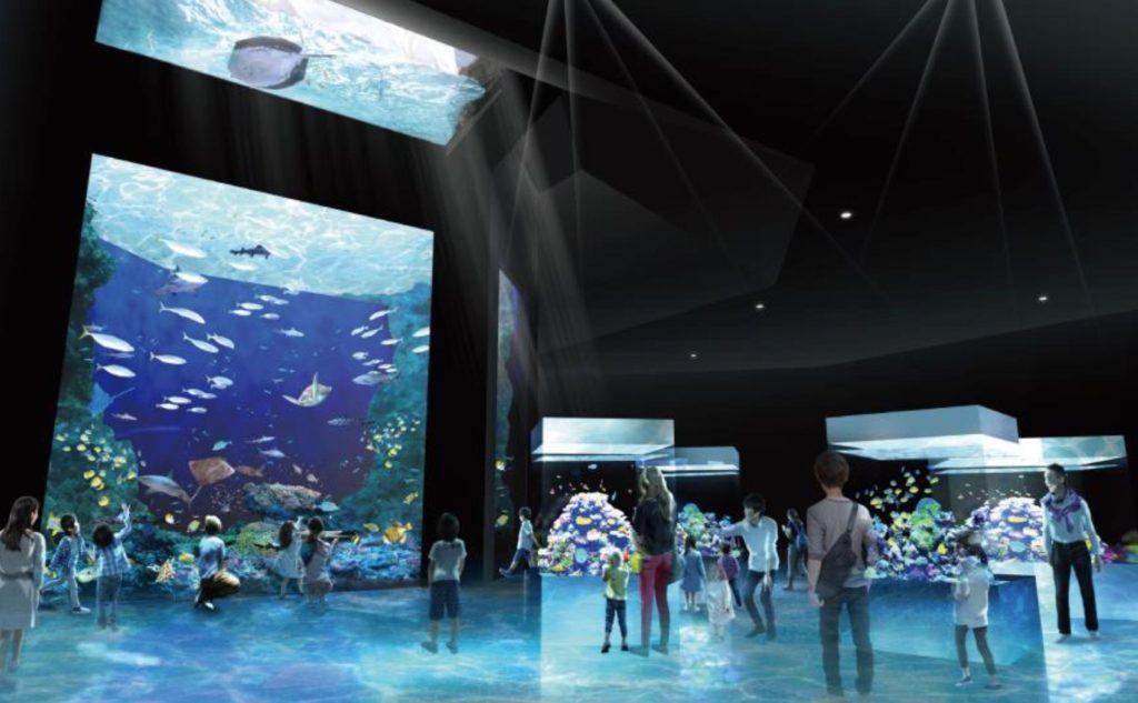 須磨海浜水族園 須磨水族館 スマスイ リニューアル 2024