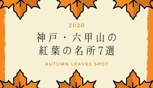 【2020年】神戸・六甲山の紅葉の名所7選。見頃の時期・ライトアップ・イベントまとめ